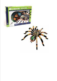 SPIDER ANATOMY MODEL/PUZZLE, 4D Vision Kit #26112 TEDCO SCIENCE TOYS