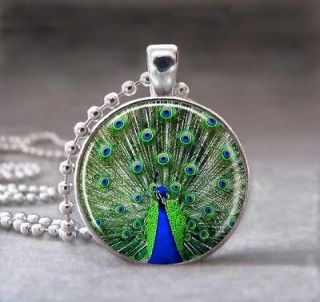 Peacock Bird Animal Altered Art Glass Dome Photo Pendant Necklace, no