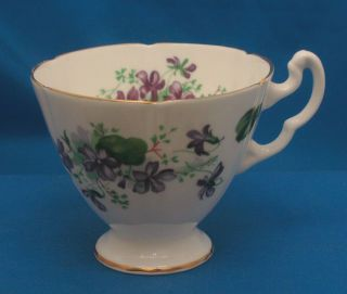Royal Adderley Ridgway Potteries Fine Bone China Tea Cup