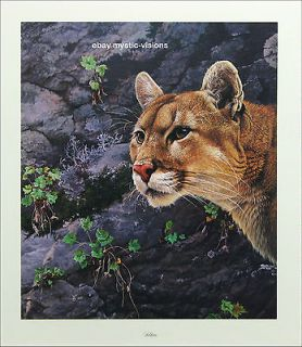 Alan Hunt SOLITAIRE Signed & Numbered Cougar Mountain Lion Puma Art