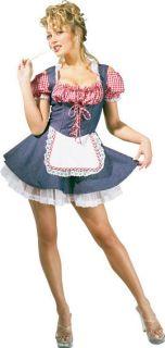 Farmers Daughter Gingham Denim Dress Up Sexy Adult Halloween Costume