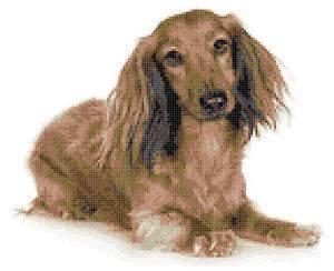 dachshund cross stitch in Crafts