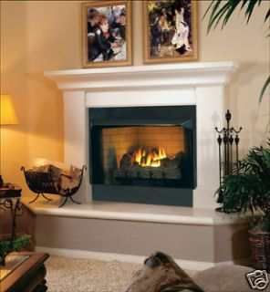 Ventless Propane & Natural Gas Fireplaces Insert Vent Free Fireplaces