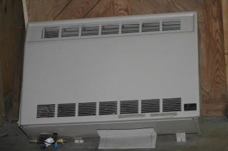 Empire Heating System gas heater