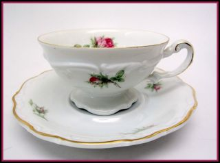 Hertel Jacob Porzellan Bavaria Germany MOSS ROSE Footed Cup & Saucer