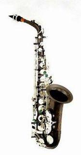 Sax BIG LIP Alto Saxophone in Black Nickel finish Selmer sax care kit