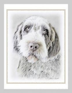 Wirehaired Pointing Griffon Blank Note Greeting Cards