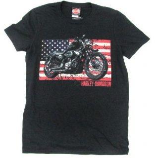 harley davidson nightster motorcycle