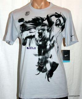 3D Hero T Shirt Grey/Black Dri Fit 439549 096 NWT LeBron James Heat