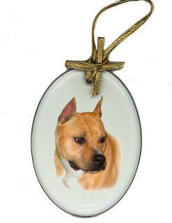 AMERICAN STAFFORDSHIRE / PIT BULL TERRIER Beveled Glass Suncatcher