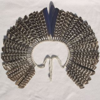 headdress arawak taino caribe carribean boriquen plumas