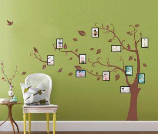 Huge Birds Vine Tree Photo Frame Wall Stickers art Mural Children Kids