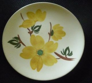 Blue Ridge Hand Painted Underglaze Plate Southern Potteries 10G 8 1/2