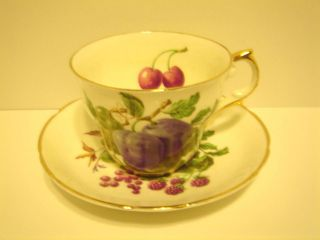 VINTAGE REGENCY FINE BONE CHINA CUP AND SAUCER SET