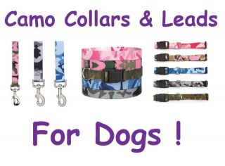 pink camo dog collar in Collars & Tags