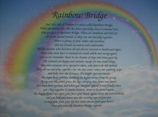 RAINBOW BRIDGE MEMORIAL POEM FOR LOSS OF BELOVED PET