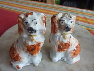 Pair of antique Staffordshire dogs, spaniels