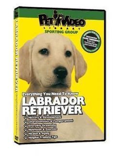 LABRADOR RETRIEVER ~ Puppy ~ Dog Care & Training DVD ++