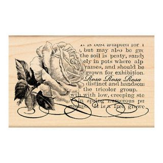 PENNY BLACK RUBBER STAMPS ROSA LOVELY ROSE SCRIPT STAMP