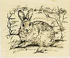 Northwoods rubber stamp Christmas Snowshoe Hare Rabbit Animal Nature