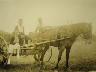 Antique Photo Harnessed Horse Drawn Field Hay Plow Ride