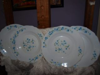 arc arcopal france Veronica Pattern SOUP BOWLS