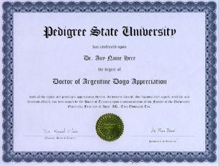 Doctor Argentine Dogo Novelty Diploma Puppy Dog Lover