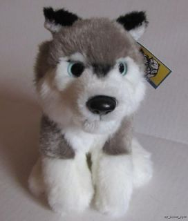 New Alaska Husky Dog Quality Soft Baby Plush Animal