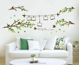 Photo and Fresh Tree DECOR DECAL ART Wall Sticker Removable