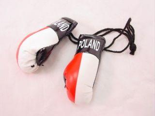 BOGO Mini Boxing Glove Sets   POLAND   Auto Dorm Decor
