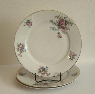 Thun Thuny Chechoslovakia Porcelain Dinner Plates   3