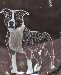 American Staffordshire/Pit Bull Terrier Nat.Ear Etched Cooler/Tumbler