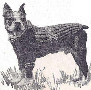 Bernat: Pattern Detail - Boa - Dog Coat (knit)