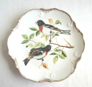 Vtg Norcrest Porcelain Red Breasted Grosbeak Bird Plate/Plaque, Japan