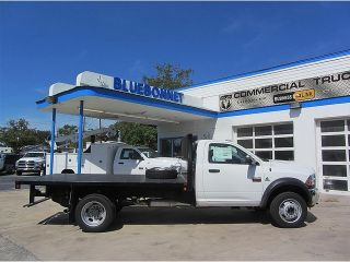 Dodge  Ram 4500 2WD Reg Cab HD Cab & Chassis Dually Flat Bed Vinyl