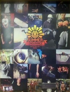 Summer of Endurance Element Skateboard Poster Vintage 2006 Skate Team