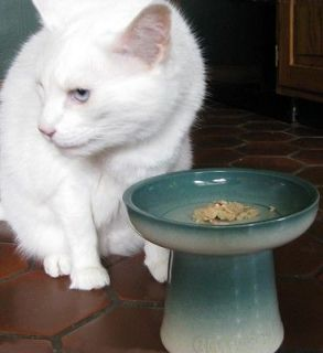 raised dog food bowls in Dishes & Feeders