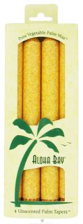 Buy Aloha Bay   Palm Tapers Unscented Candles Honey Gold   4 Pack