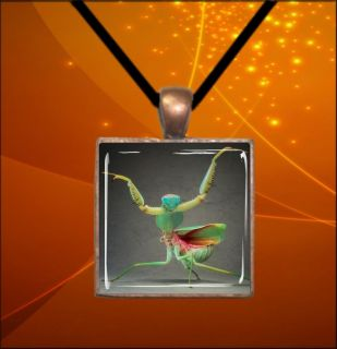 BROWN & ORANGE PRAYING MANTIS SQUARE GLASS CABOCHON SILVER PENDANT