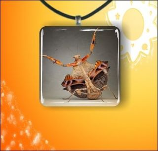 INSECT LIFE BROWN PRAYING MANTIS GLASS 1 PENDANT NECKLACE