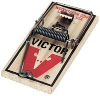 Victor M150 Lot of Twenty (20) Snap Spring Wooden Mouse Trap / Rodent