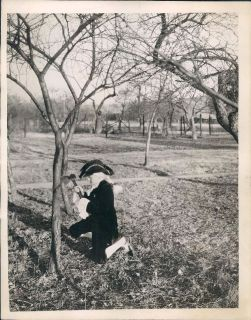 1928 Re Enactment Of George Washington Chopping Down Cherry Tree Wire
