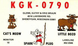 vintage CB radio QSL postcard cat bull fishing comic Braun 1970s