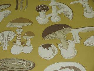 BRUNSCHWIG & FILS CHAMPIGNONS 1 WALLPAPER/$45 A TRIPLE ROLL