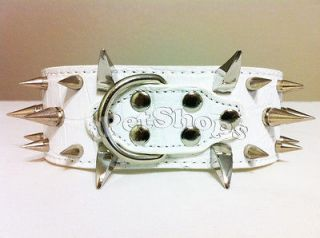 Leather with studded Spiked for pet / Dog Collars 2 14 18 Xs W