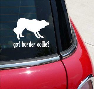 GOT BORDER COLLIE? COLLIE DOG GRAPHIC DECAL STICKER VINYL CAR WALL