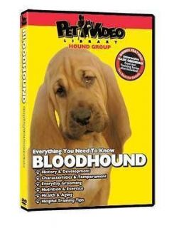 neapolitan mastiff puppy dog care training dvd