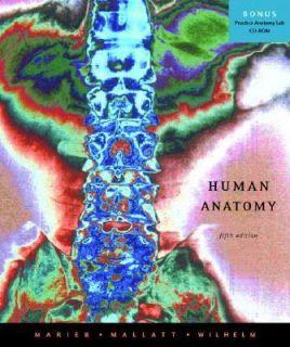 Human Anatomy by Wilhelm, Marieb and Mallatt 2007, Paperback Quantity