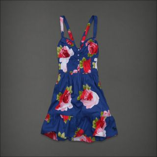 Abercrombie Women Blue Pink Floral Ruffle Dress Camille XS New