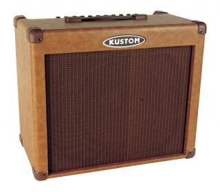65 Watts Acoustic Guitar Amplifier Combo w 12 Amp Speaker New